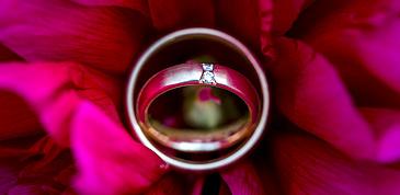 Trauringe in Blume - Hochzeitsringe
